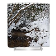 Winter At The Creek Shower Curtain