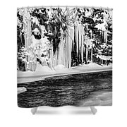 Winter At The Creek Monochrome Shower Curtain