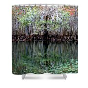 Winter At The Springs 1 Shower Curtain