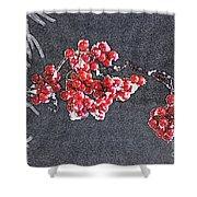 Winter Berries II Shower Curtain