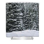 Winter Bliss Shower Curtain