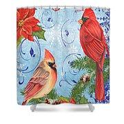 Winter Blue Cardinals-joy Card Shower Curtain