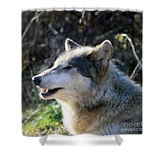 Winter Breathing  Shower Curtain