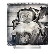 Winter Brocade Shower Curtain