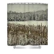 Winter By The Pond Shower Curtain