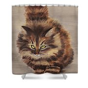 Winter Cat Shower Curtain