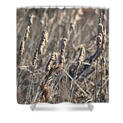 Winter Cattail Abstract Shower Curtain