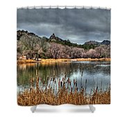 Winter Cattails By The Lake Shower Curtain