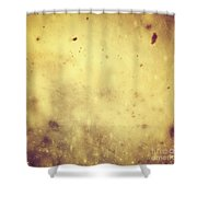 Winter Christmas Gold Vintage Background Shower Curtain