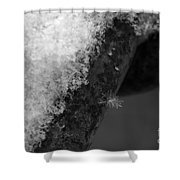 Winter Coat Black And White Shower Curtain