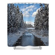Winter Creek Shower Curtain by Fran Riley