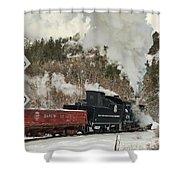 Winter Crossbuck Crossing Shower Curtain