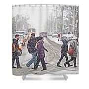Winter Crossing Shower Curtain