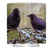 Winter Crows Shower Curtain