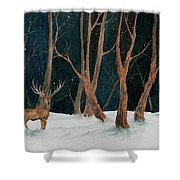 Winter Deer Shower Curtain