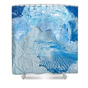 Winter Shower Curtain by Denise Mazzocco