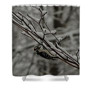 Winter Downy Shower Curtain