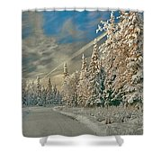 Winter Drive Shower Curtain