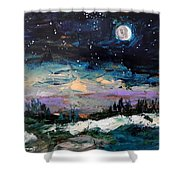 Winter Eclipse Shower Curtain