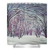 Winter Fairies Shower Curtain