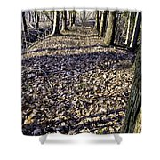 Winter Fall On The Trail Shower Curtain
