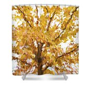 Winter Final Color Shower Curtain