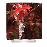 Winter Flower Shower Curtain