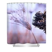Winter Flowers  Shower Curtain