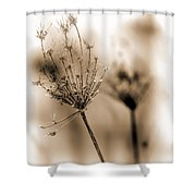 Winter Flowers II Shower Curtain
