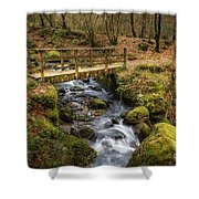 Winter Footbridge Shower Curtain
