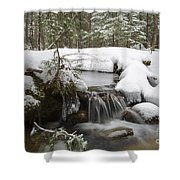 Winter Forest - Lincoln New Hampshire Usa Shower Curtain