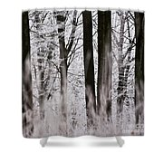 Winter Forest 1 Shower Curtain