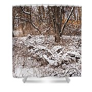 Winter Forest Panorama Shower Curtain