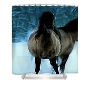 Winter Friendship  Shower Curtain