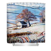 Winter Frost Shower Curtain by Tilly Willis