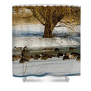 Winter Geese - 01 Shower Curtain