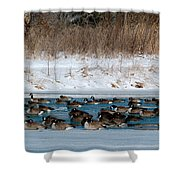Winter Geese - 02 Shower Curtain