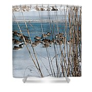 Winter Geese - 04 Shower Curtain