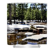 Winter Gives Way To Spring 32626 Shower Curtain