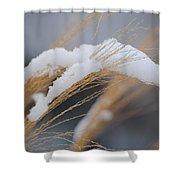 Winter Grasses IIi Shower Curtain