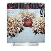 Winter Huddle Shower Curtain