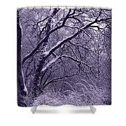 Winter In Purple Shower Curtain