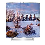 Winter In Pink Color Shower Curtain