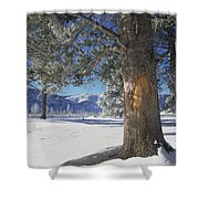 Winter In Yellowstone National Park Shower Curtain
