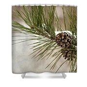 Winter Interlude Shower Curtain by Evelina Kremsdorf