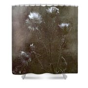 Winter's Call Shower Curtain