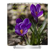 Winter Is Over - Spring Has Arrived Shower Curtain