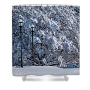 Winter Lamp Post Shower Curtain