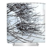 Winter Lavender Shower Curtain