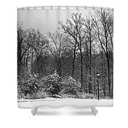 Winter Light Post Shower Curtain